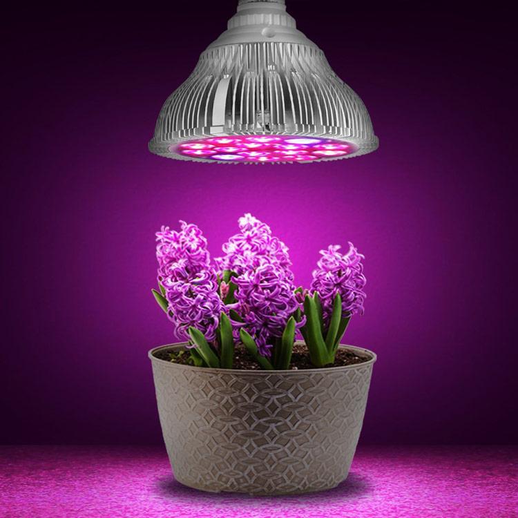 Led Shop Lights Australia: Our Range Of LED Grow Lighting